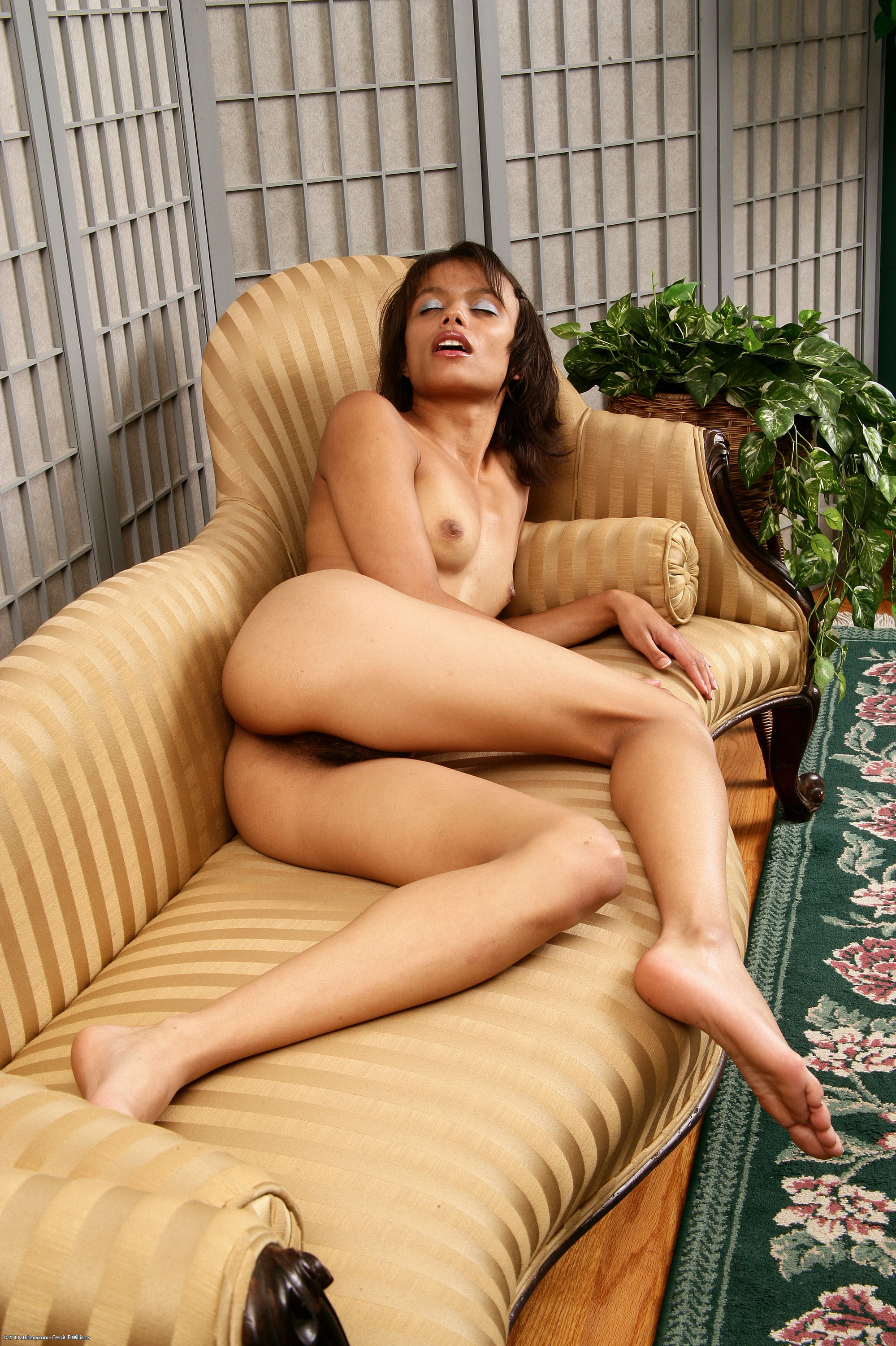 Nude black hairy girls, hot trans porn
